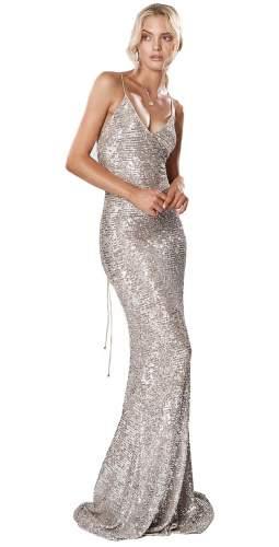Winona Broadway Maxi Dress Silver